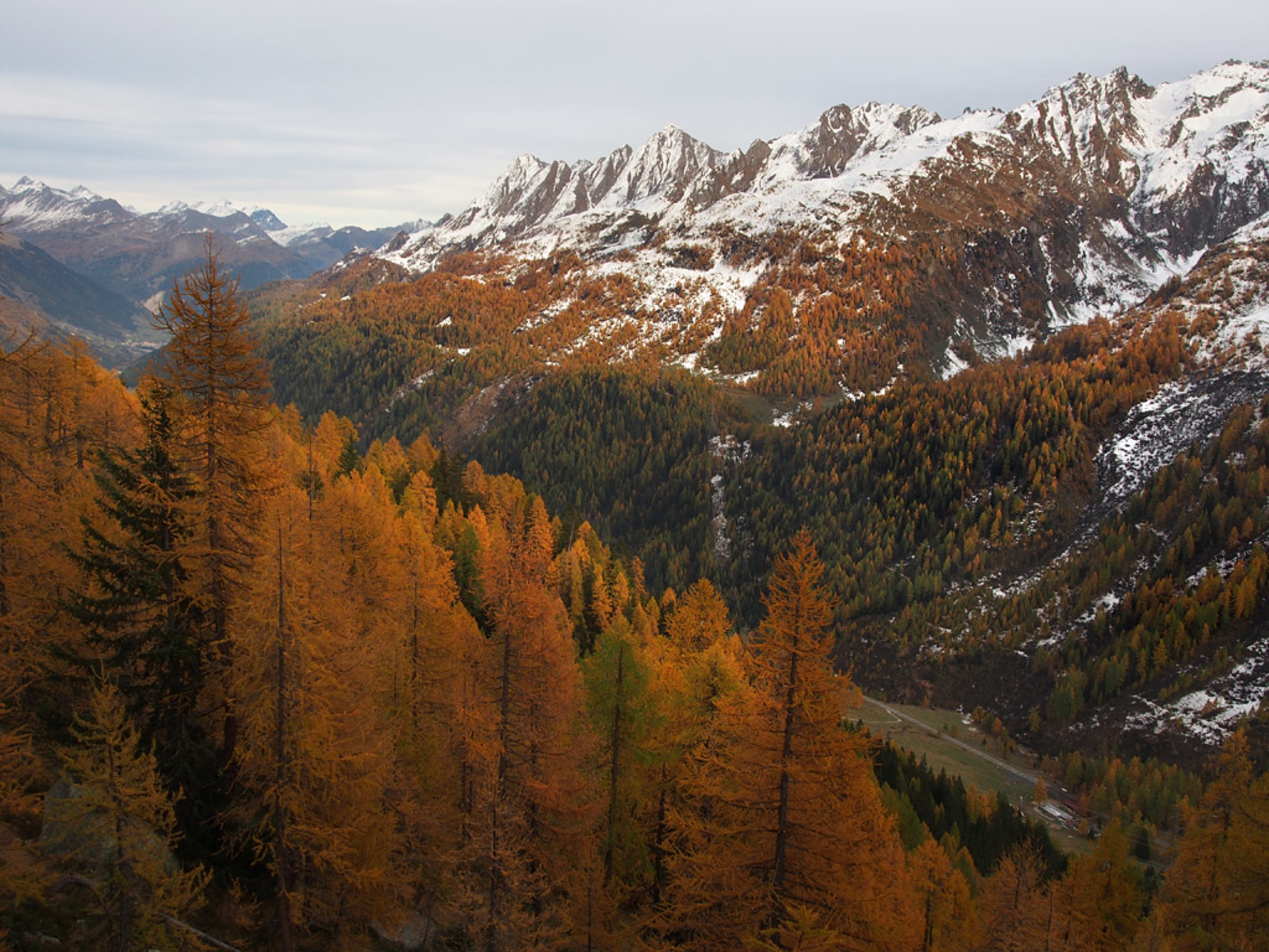 Autunno in Val Bedretto