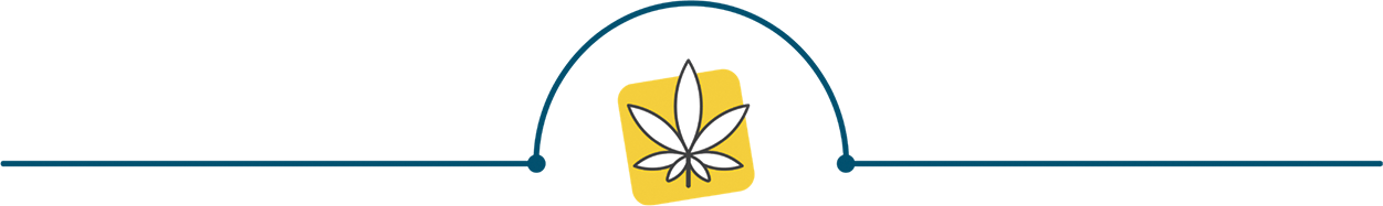 Cannabis Leaf Separating Access to Medical Cannabis and Medical Cannabis Partnerships Paragraphs. Illustration.
