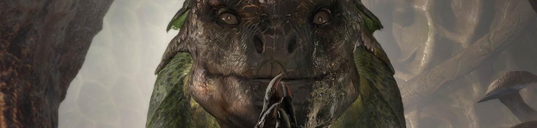 The Elder Scrolls: Legends | Dev Diary – Behind The Houses