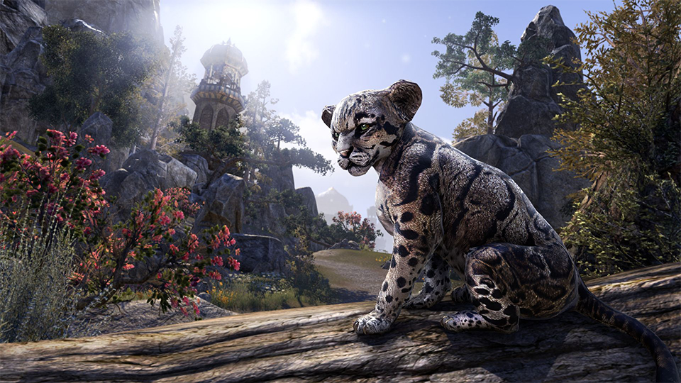 Bethesda Game Days 2019 ESO Cub