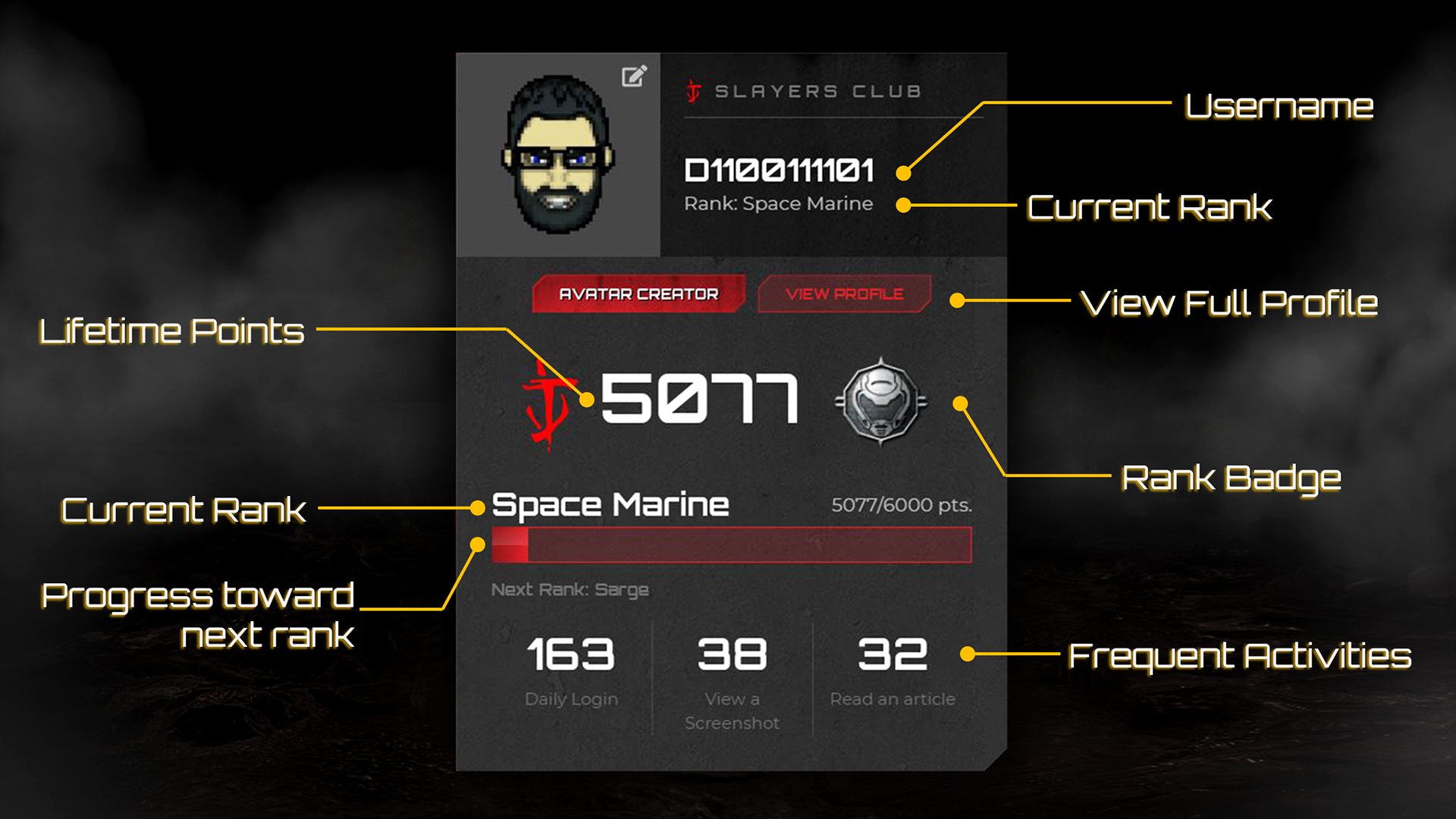 SC Profile Anatomy 1920x1080 En