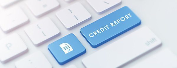 Who Can Check Your Credit?