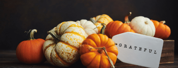 Our Thanksgiving Savings Tips and What's Different This Year (Everything!)