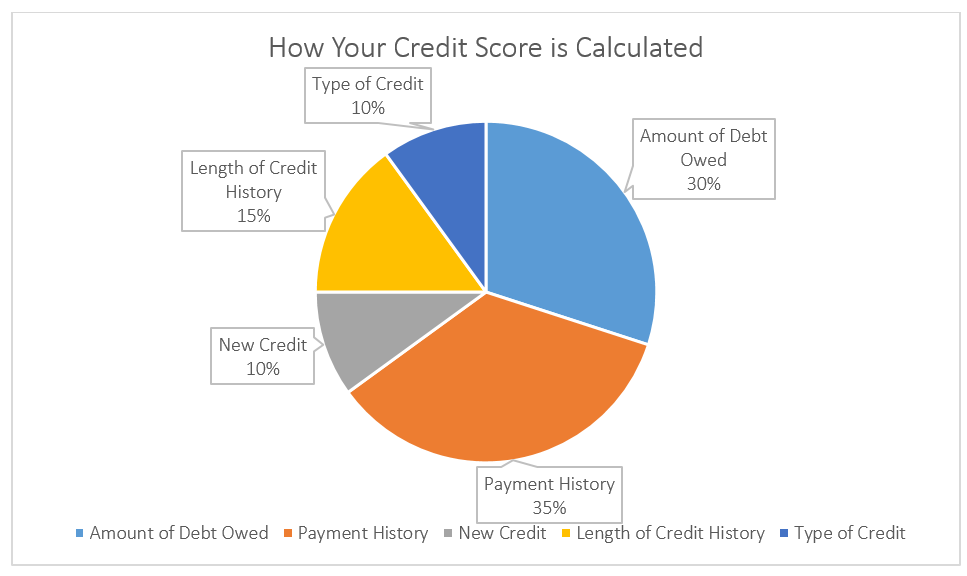 What's In My Credit Score?