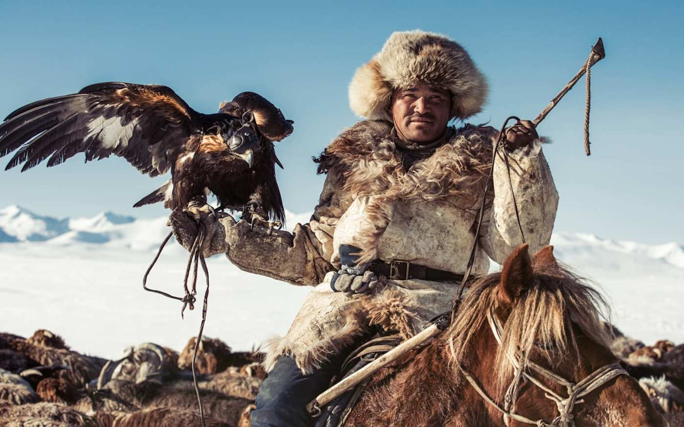 Image of a man in Mongolia, on a horse, with a bird of prey on his arm