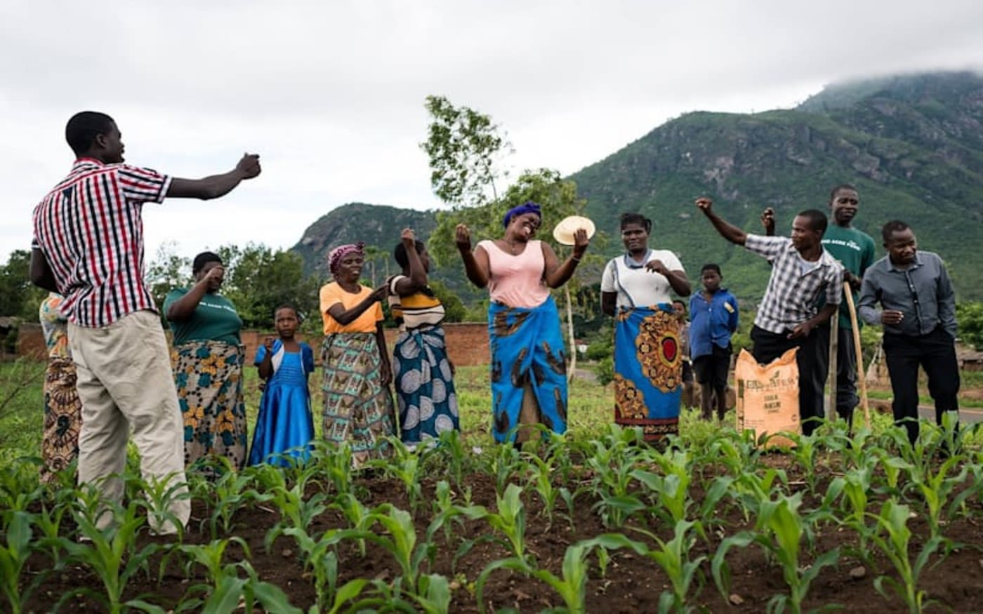 People on land with crops growing