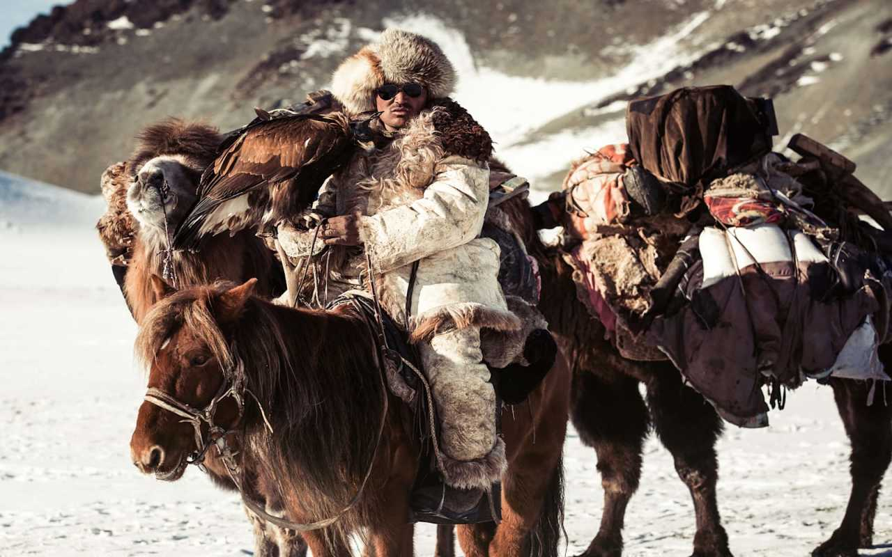 A mongolian sat on a horse with two camels