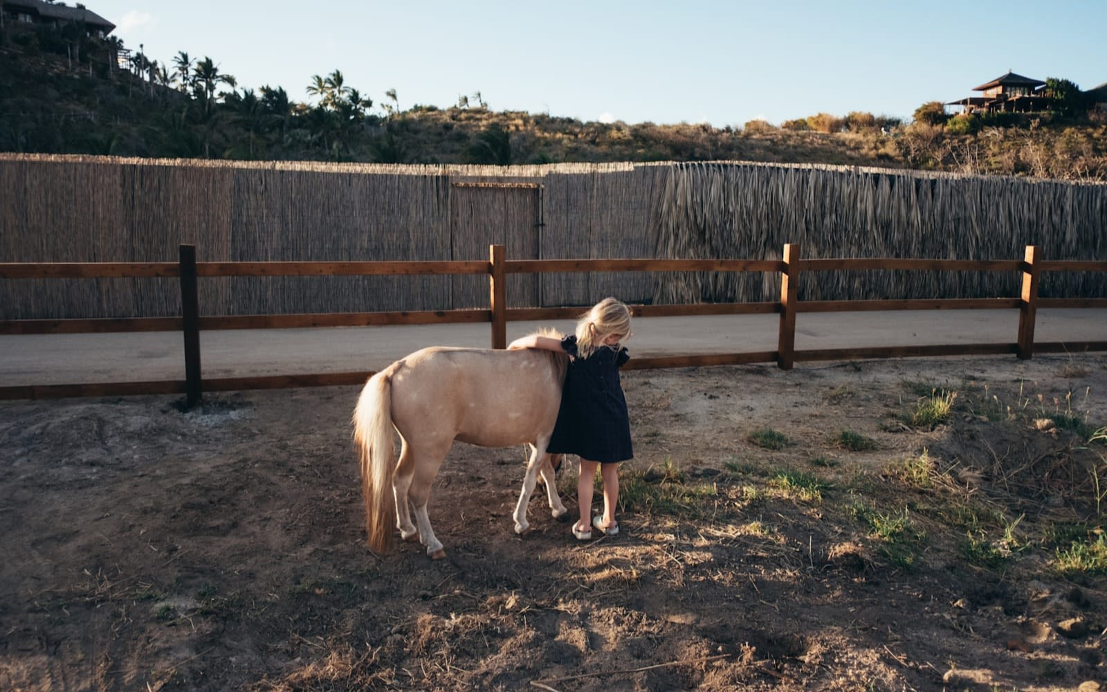 Richard Branson's grandchild hugging a miniature horse in a fenced yard on Necker Island.
