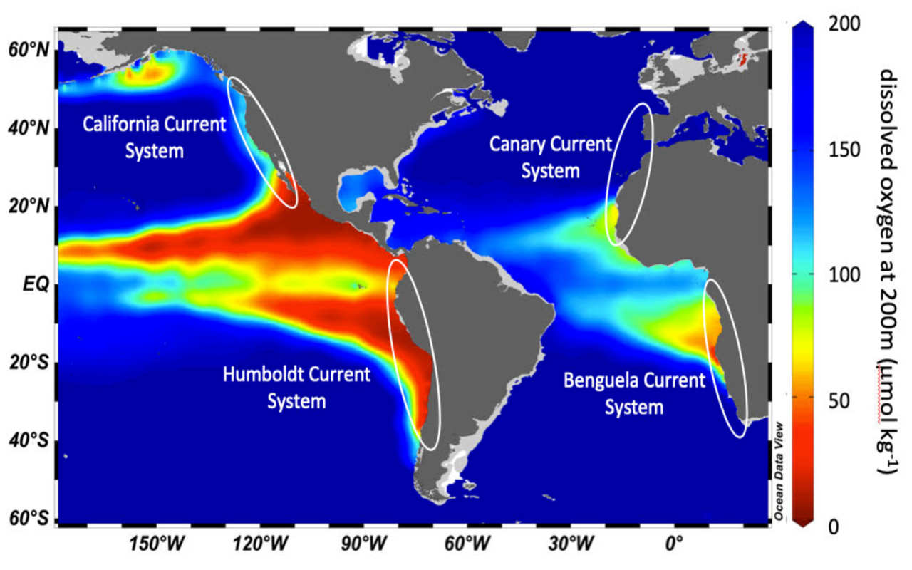 Map showing ocean deoxygenation