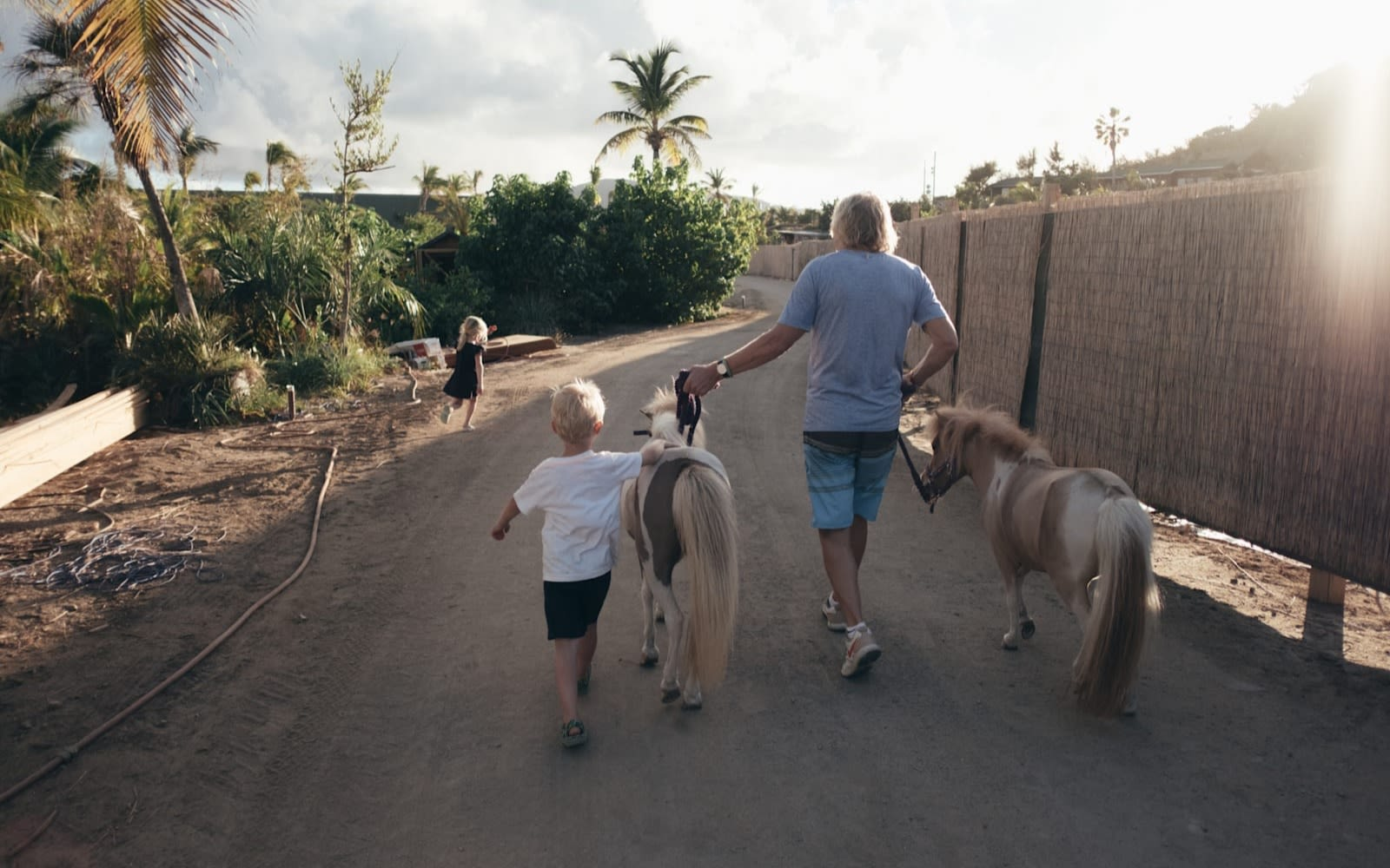 Richard Branson and grandchildren Etta and Artie walk down a road with two miniature horses.