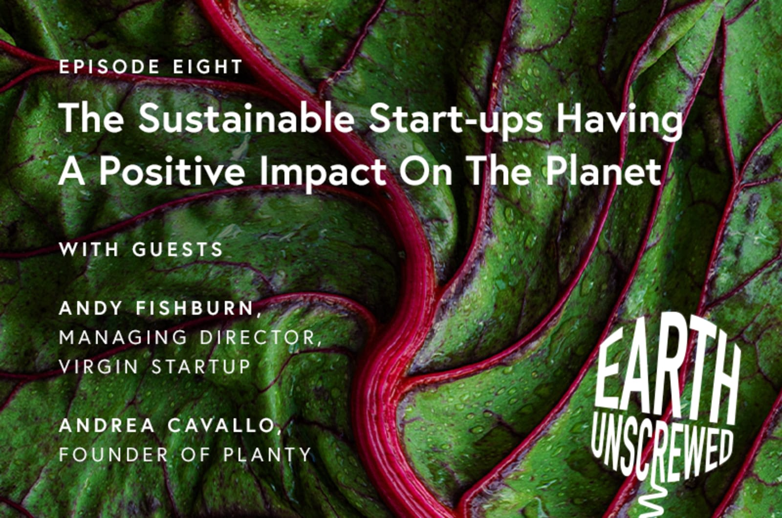 Episode Eight.  The sustainable start-ups having a positive impact on the planet.  With guesrs Andy Fishburn, Managing director Virgin Start up.  Andrea Cavallo founder of planty.  Earth Unscrewed. White text on a salad leaf background