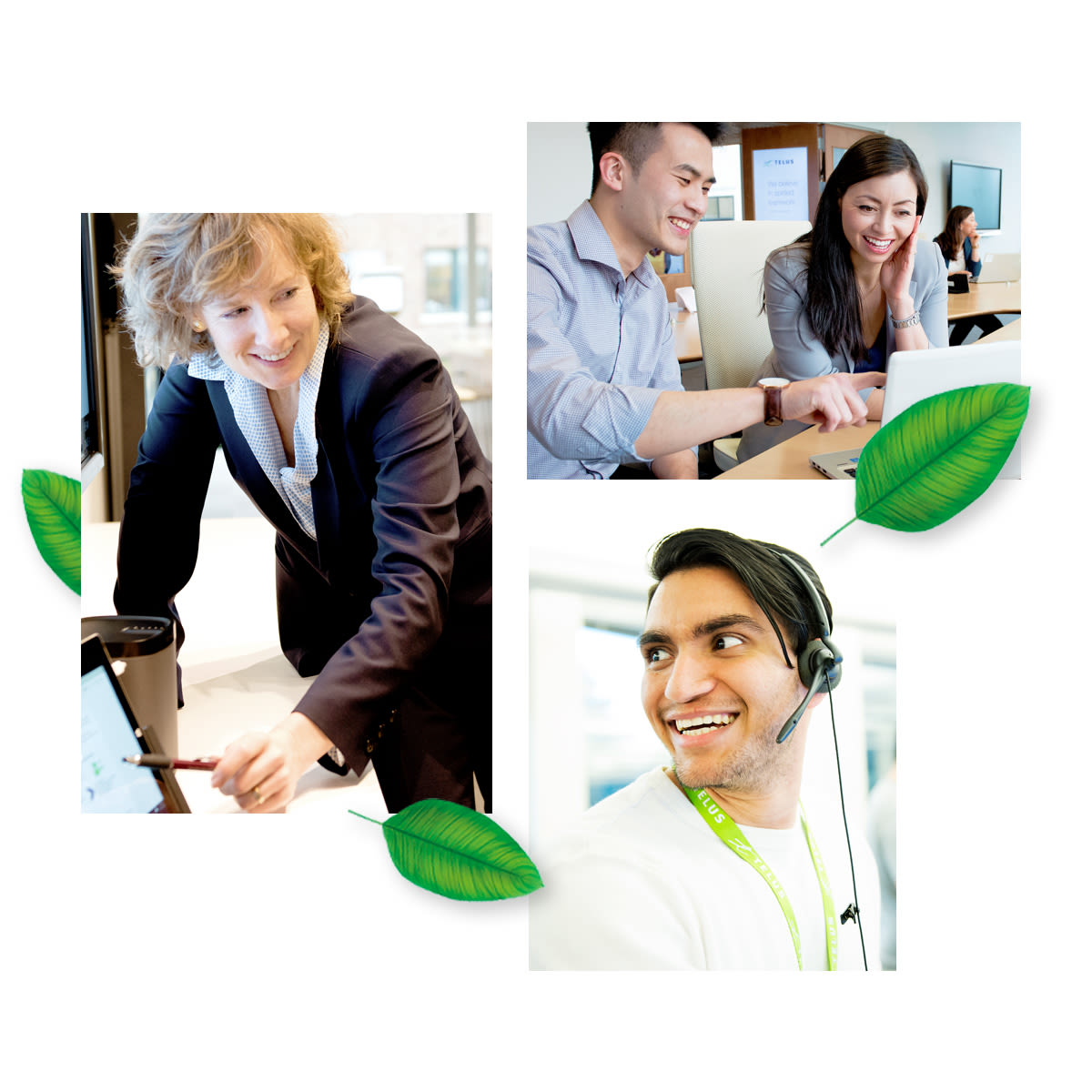 Apply for a job at TELUS & join us today - Careers | TELUS