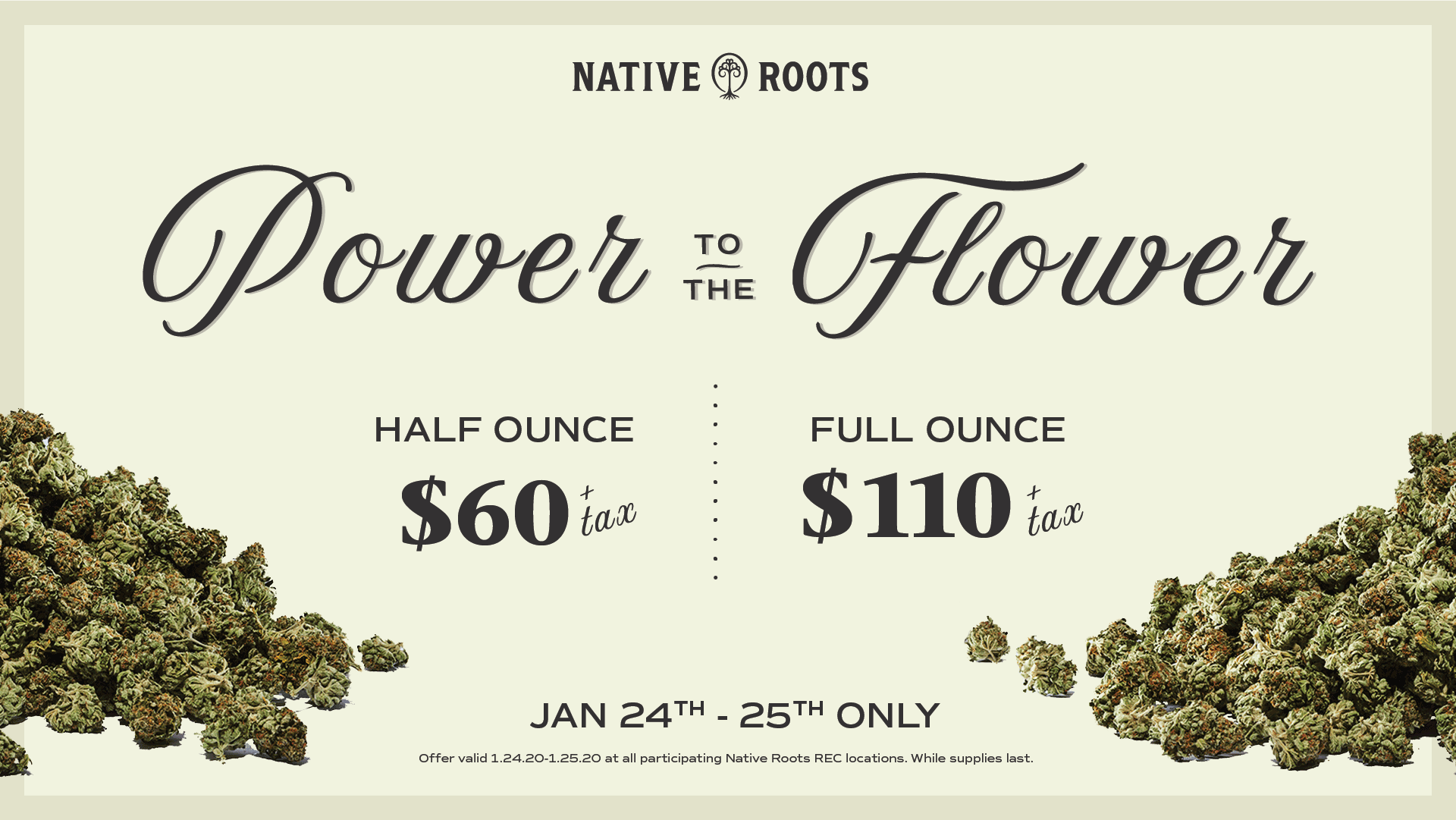 January Deals - Power to the Flower
