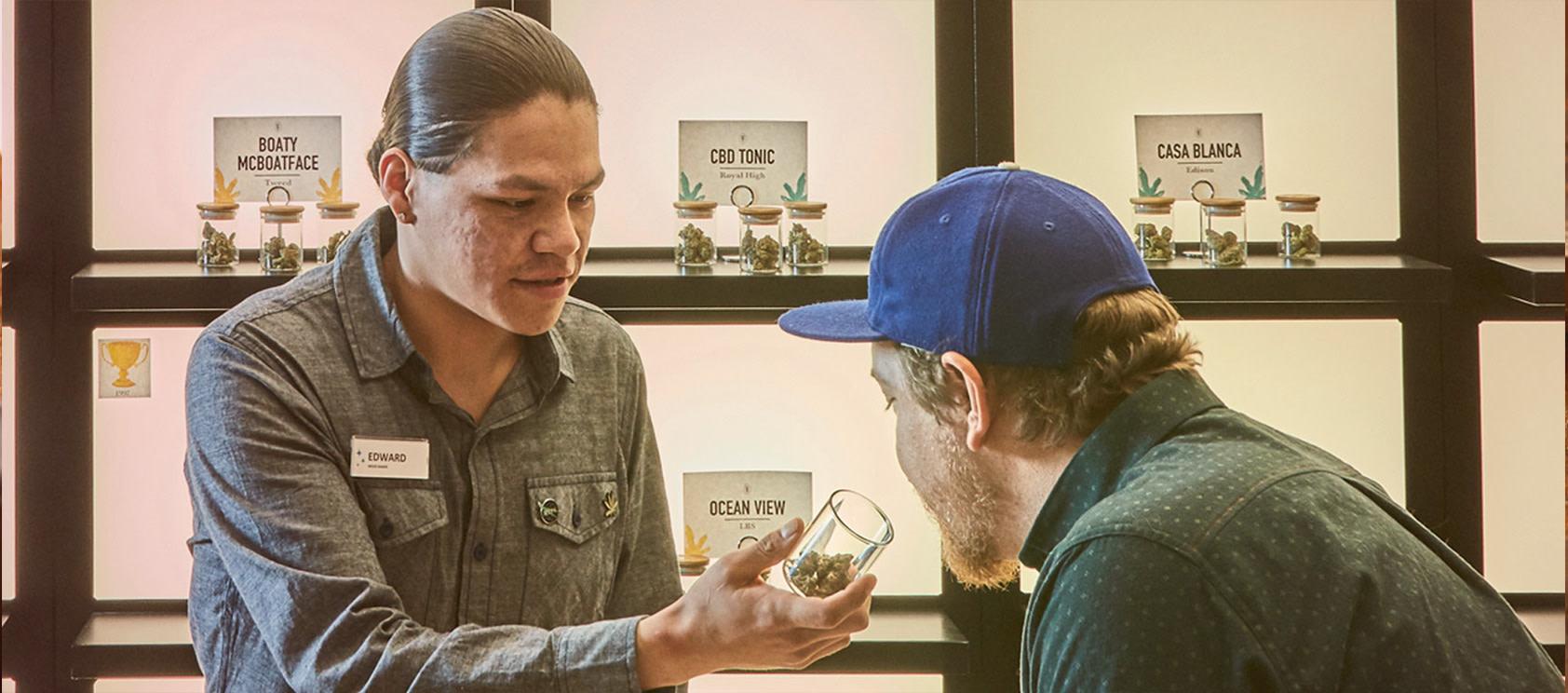 Native Roots Cannabis Co. Meet Our Cannacoaches