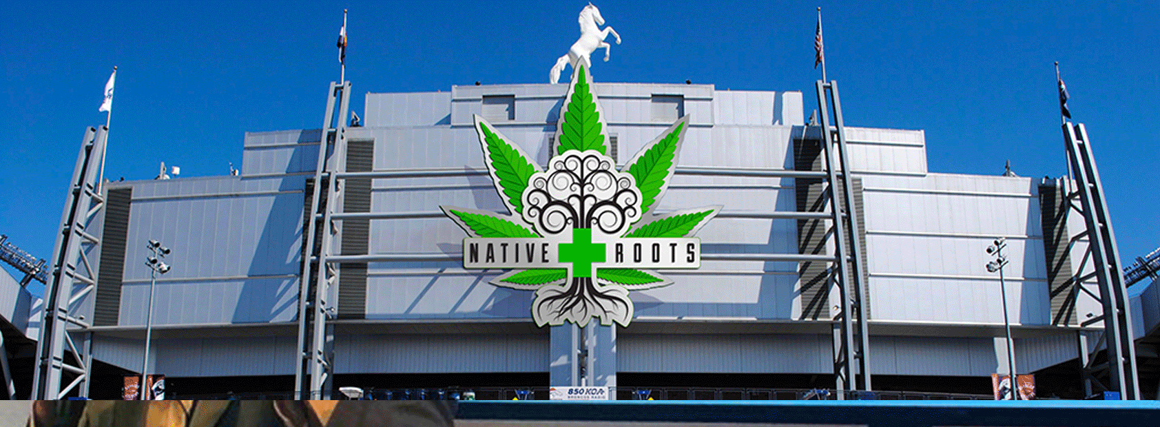 Native Roots Seeks Naming Rights of Mile High Stadium