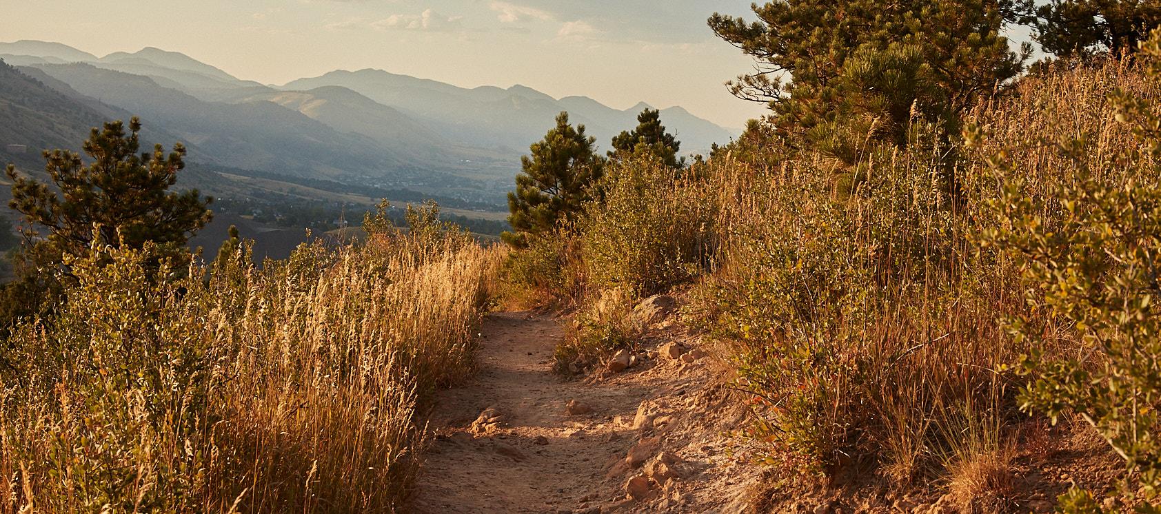 Trail running at dusk on Dakota Ridge near Denver, CO for Native Roots Cannabis Co.