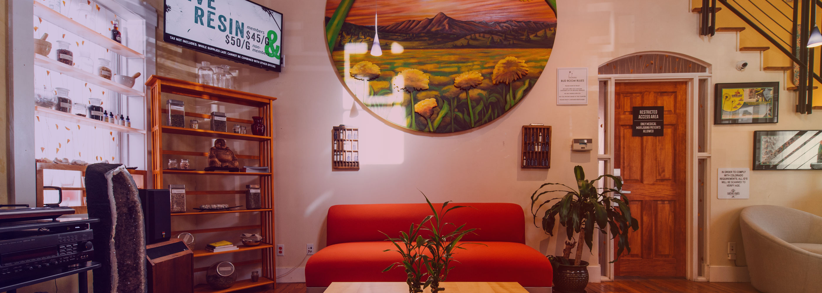 The Dandelion Marijuana Dispensary