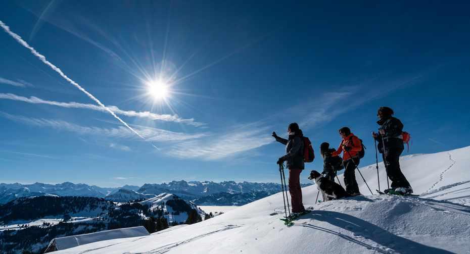 mys-Schneeschuh-Traum auf der Rigi (Kombi)-Schneeschuhlaufen_2.jpg