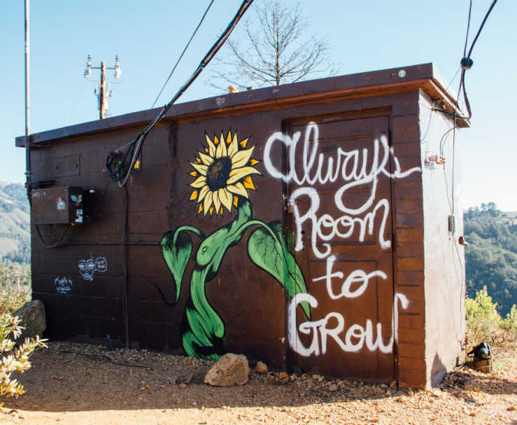 "Small brick building on a hill with a sunflower mural painting and the words ""always room to grow""."