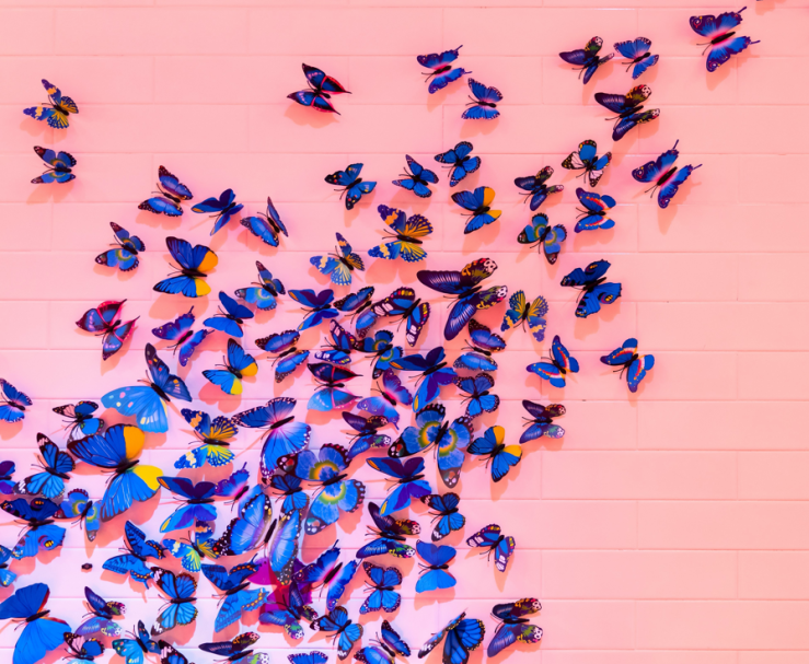 A swarm of blue butterflies against a brick wall painted pink.