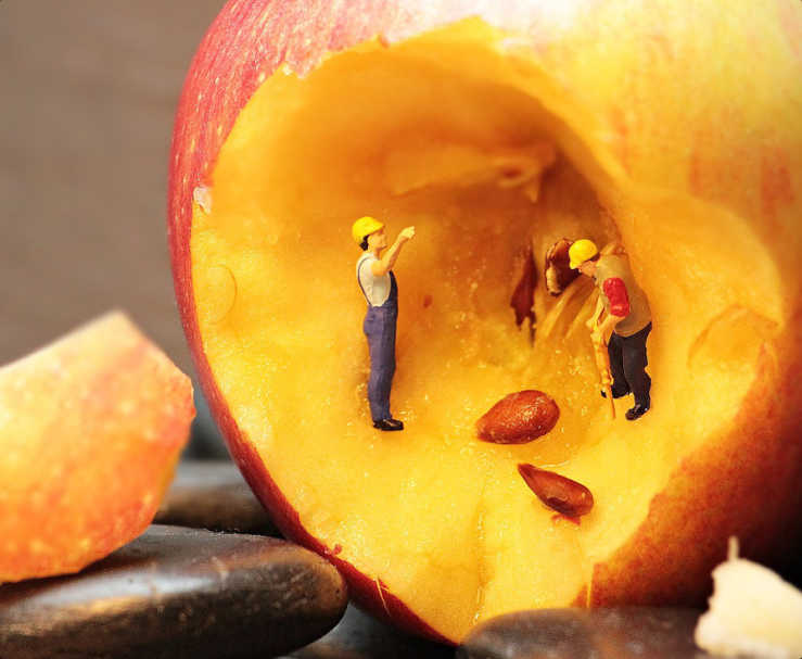 Two miniature people digging into an apple towards its core.
