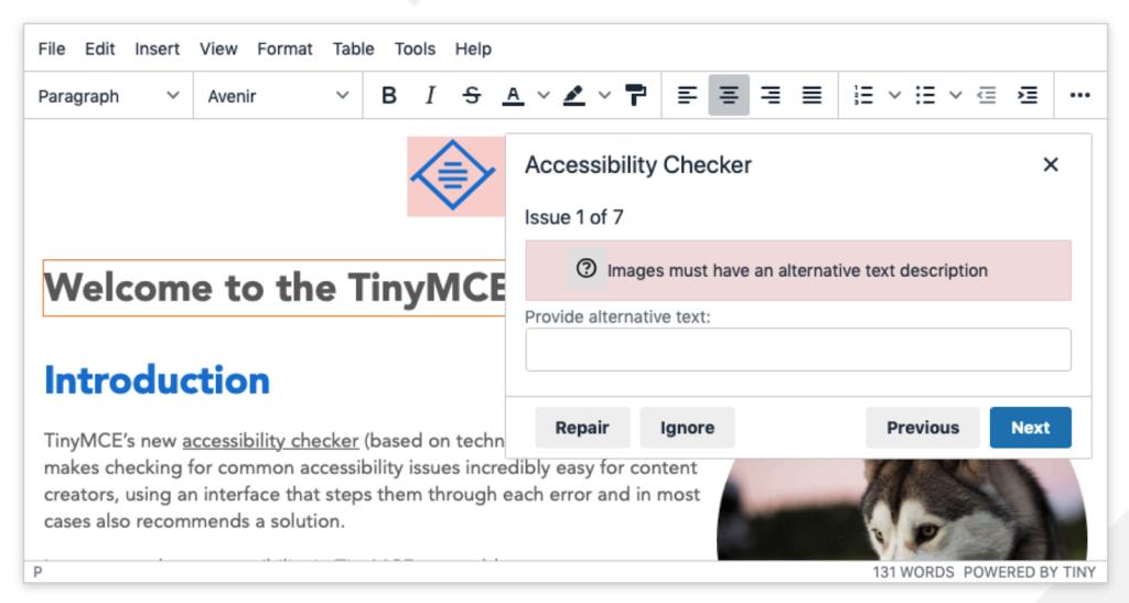 TinyMCE 5 accessibility checker demo