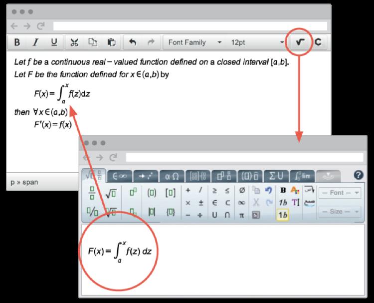 WIRIS MathType in TinyMCE