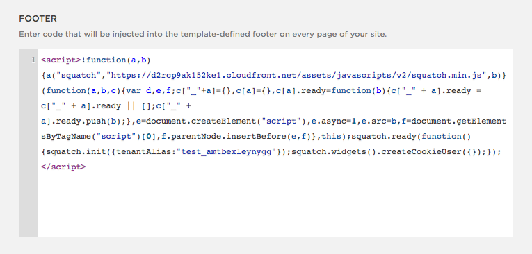 Squarespace code snippet in footer