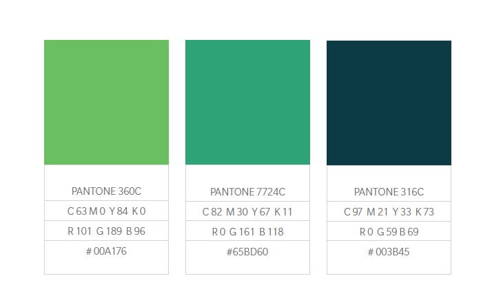 Color Palette Example1