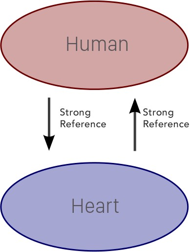 Human-Heart Retain Cycle