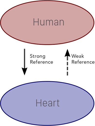 Human-Heart Retain Cycle Broken!