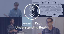 Understanding realm master