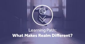 What makes realm different master