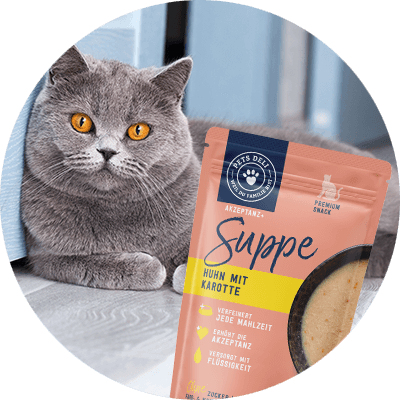 PDP-Buuble-Katze-Suppe-Huhn-600px