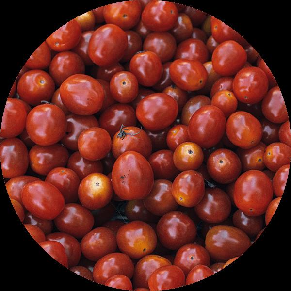 PDP-Zutaten-Tomatenmark-600px