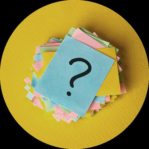 PetsDeli-BARF-Frageimage