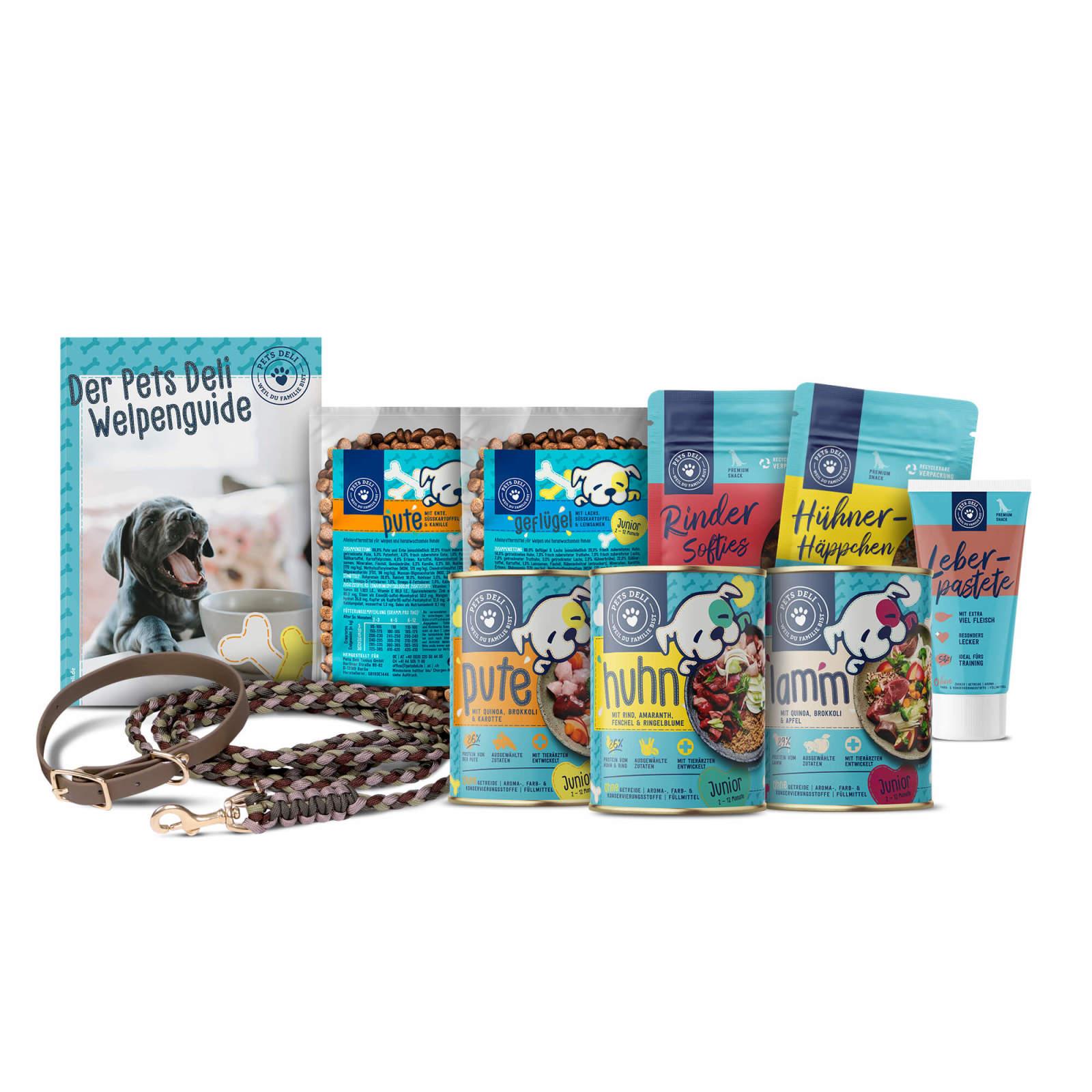 210515-puppy-kits-dog-walk-brown