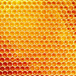 PD-Med-Bubbles-Zutaten-Bienenwachs-300x300px