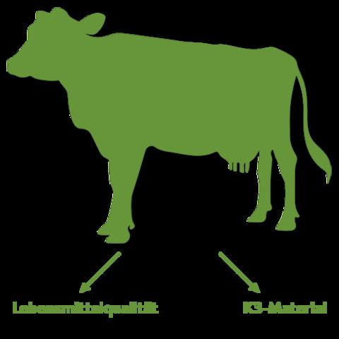 Lebensmittelqualitaet-vs.-K3-Material large
