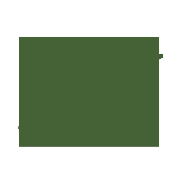 PD PDP-Icon-Green-Antibiotika