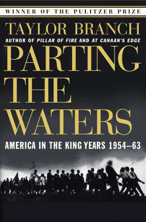 Buy Parting the Waters on Amazon