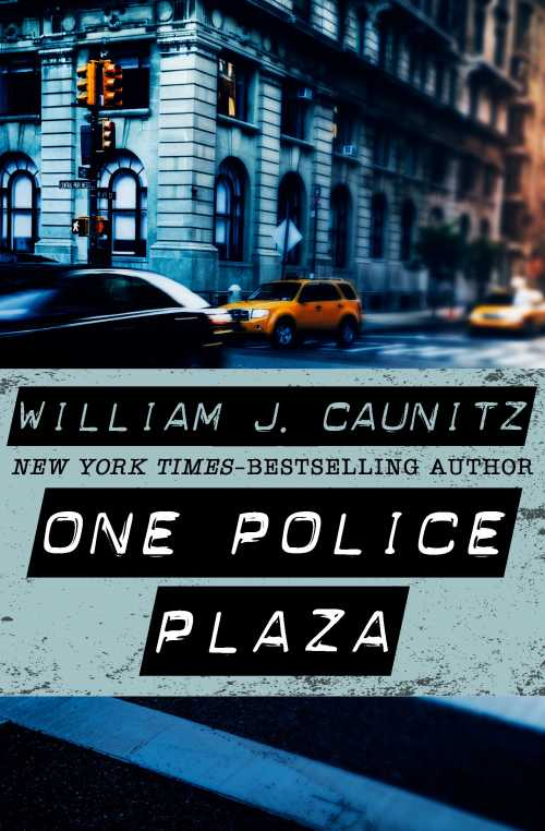Buy One Police Plaza on Amazon