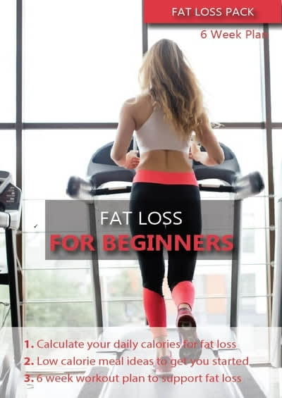Fat Loss For Beginners