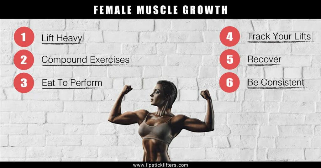 Female-muscle-growth-1024x536