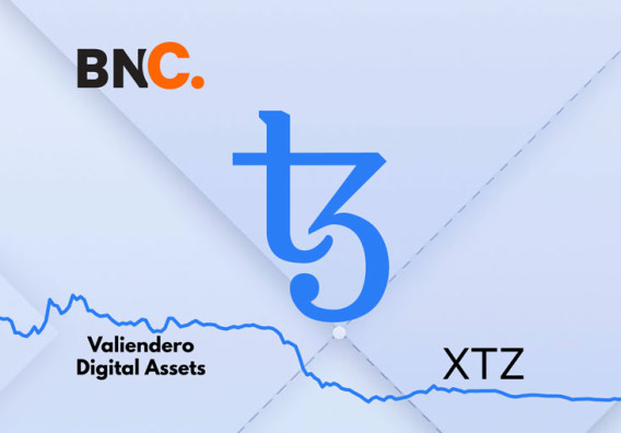 Tezos Price Analysis: Blockchain project grows in 2019