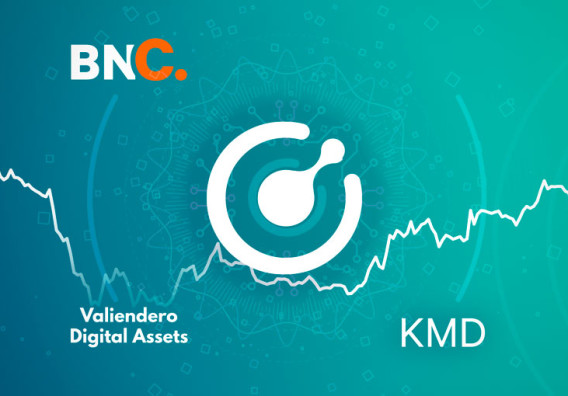Komodo Price Analysis:  Antara update targets new developers