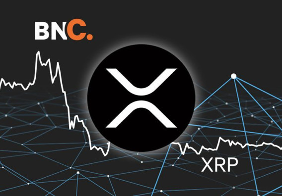 XRP Price Analysis - Price remains muted despite elevated on-chain stats