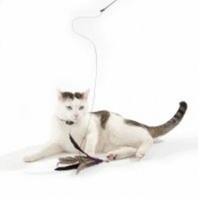 38fc628b3dee Παιχνίδια για Γάτες οικονομικά από την zooplus.gr