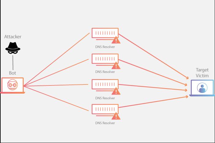DNS Amplification DDoS Attack Diagram