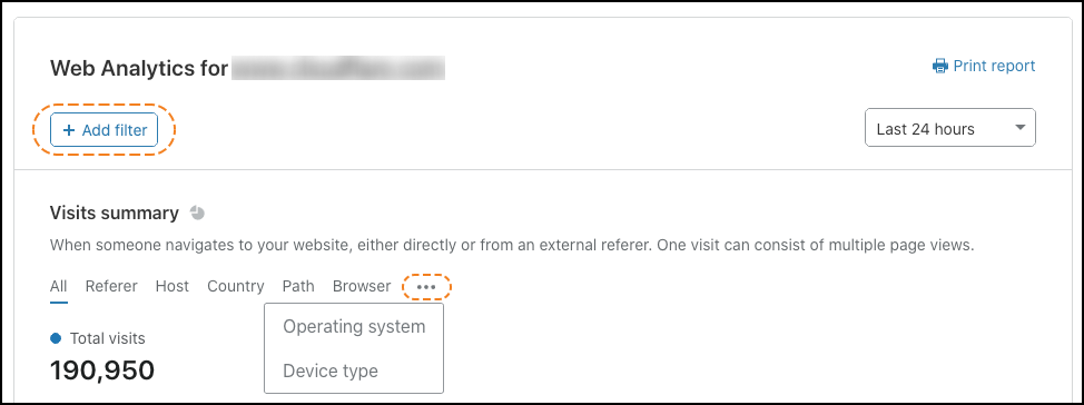 Selecting filters on the Web Analytics graph